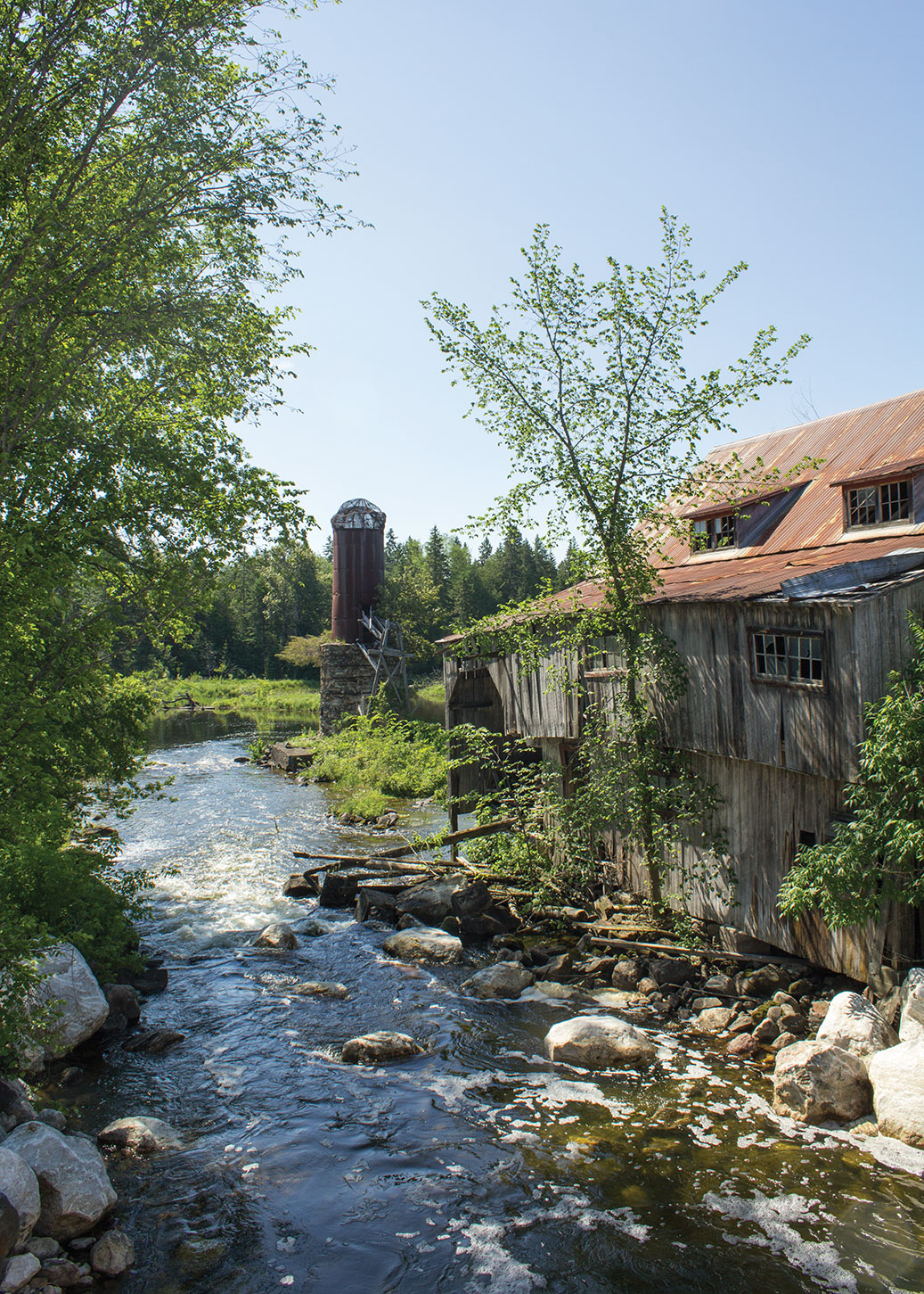 Balaclava Saw Mill