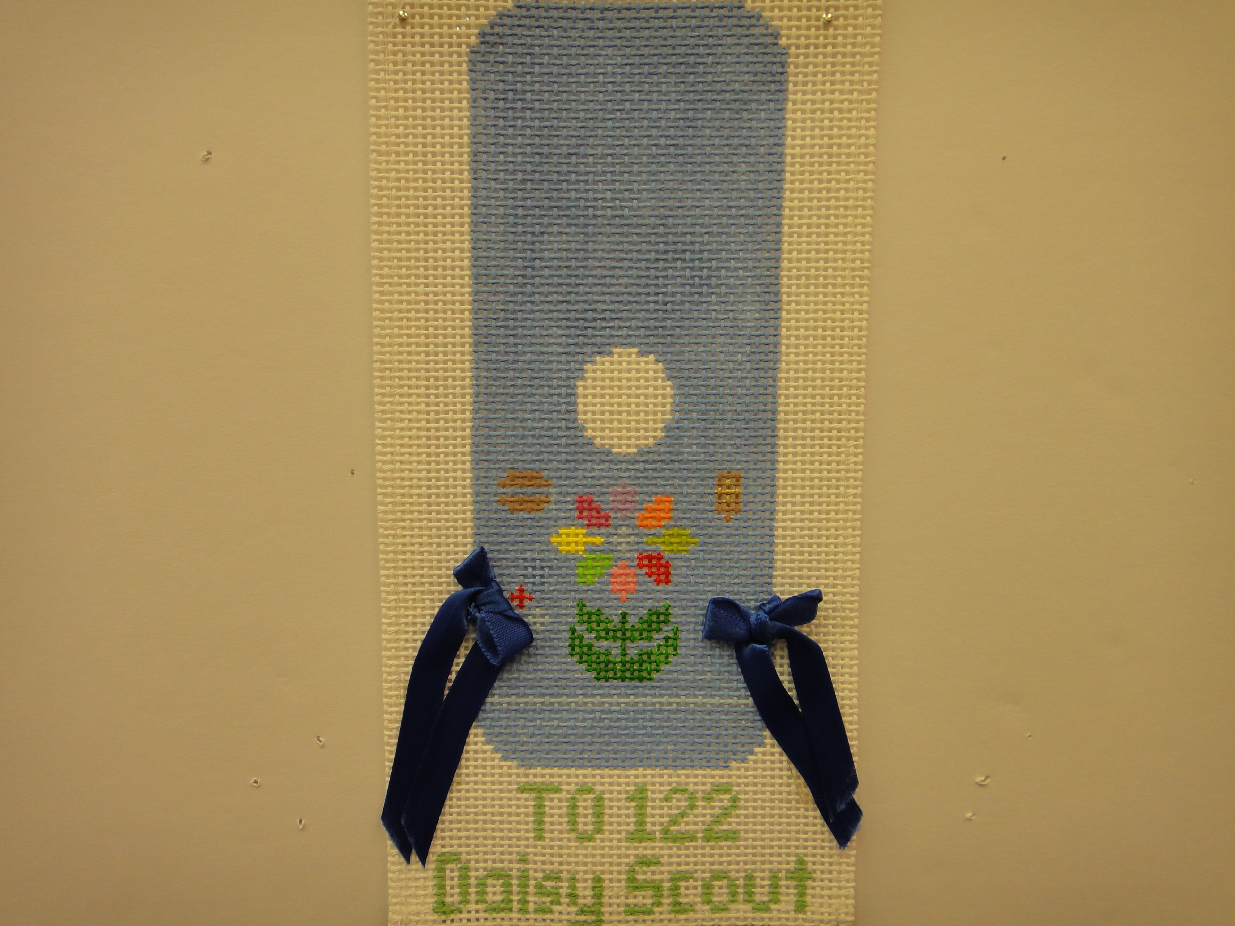 To122 Daisy Scout