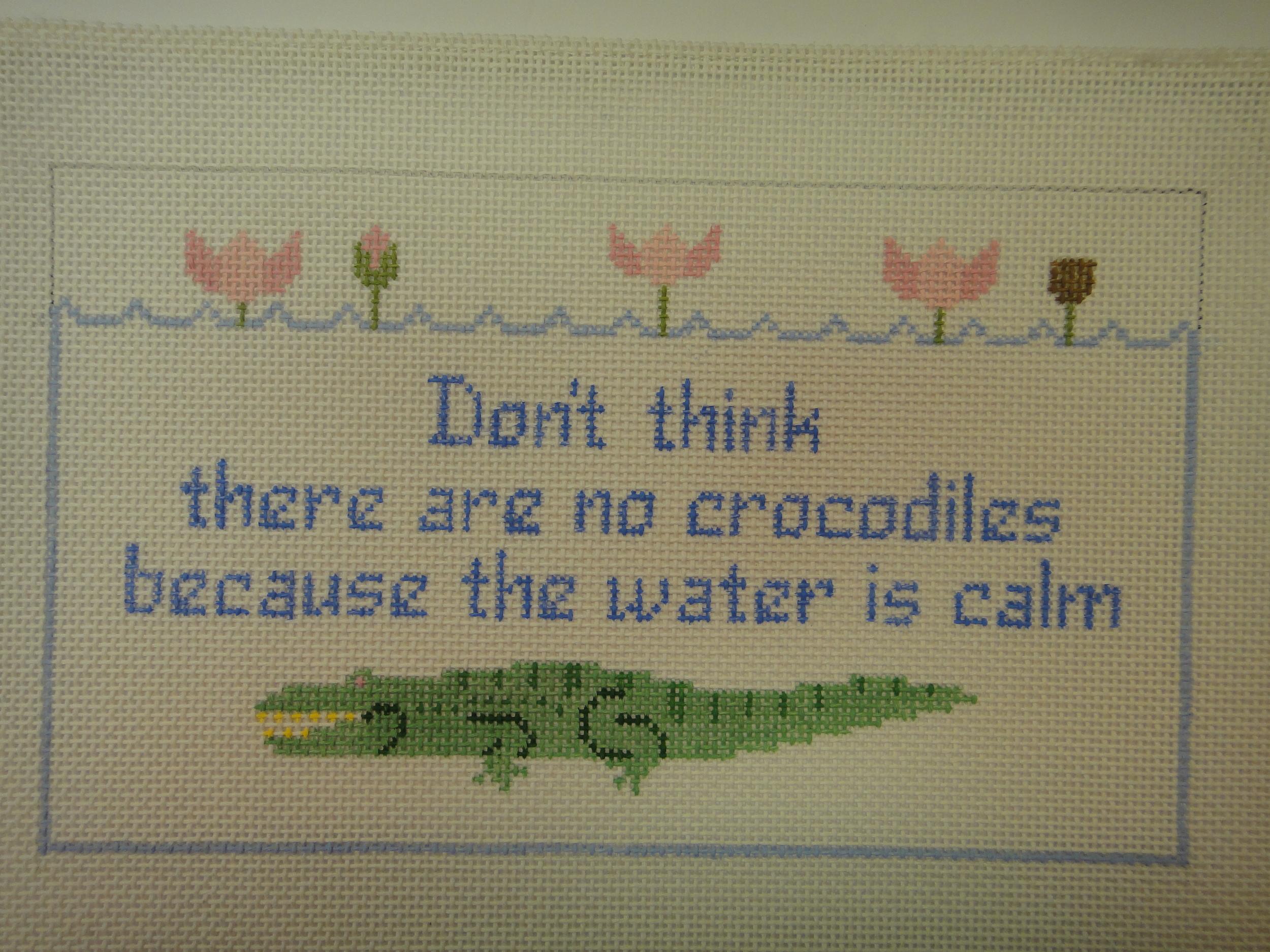 S41 No Crocodiles? (10x6)