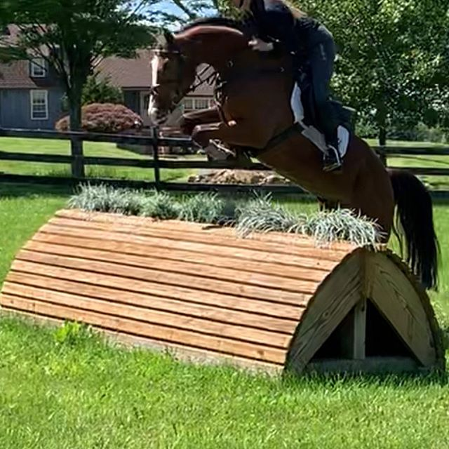 Congrats  to Phillip Dutton Eventing, Evie Dutton, and Olivia Dutton on the purchase of Redfield Iniesta! Can't wait to see what this horse and Olivia can accomplish together!! #sold
