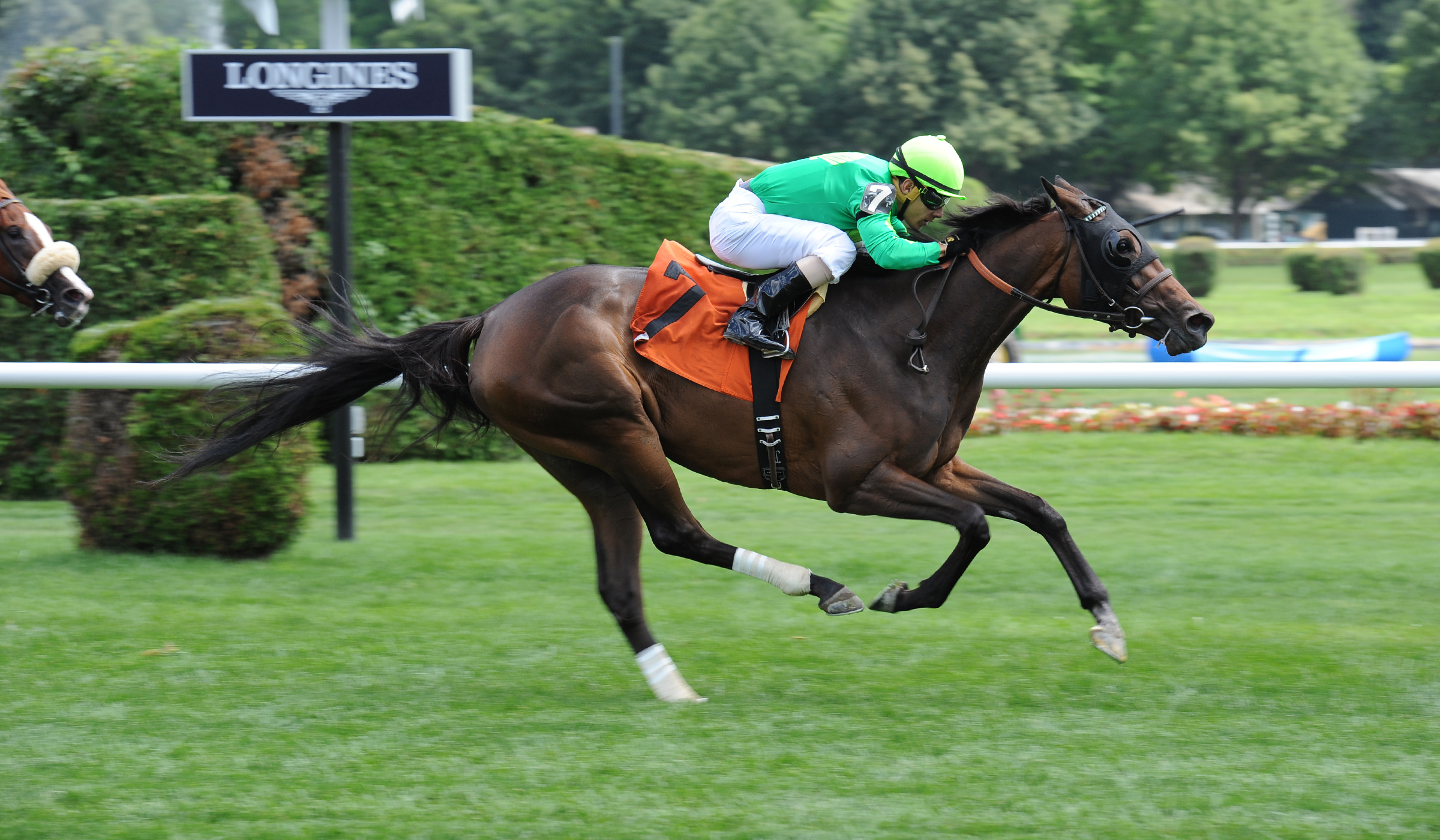Khaleesi kat - win at saratoga race track on opening day (july 2015)
