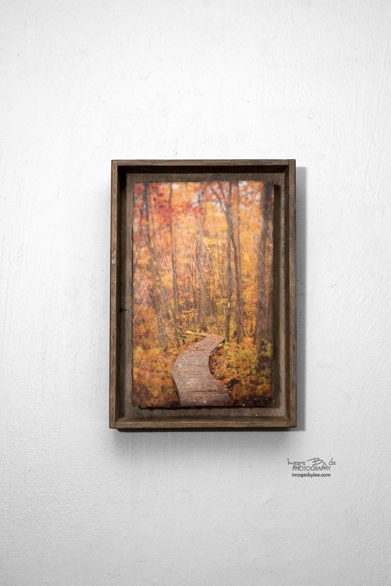 7 - Autumn Path FB.jpg