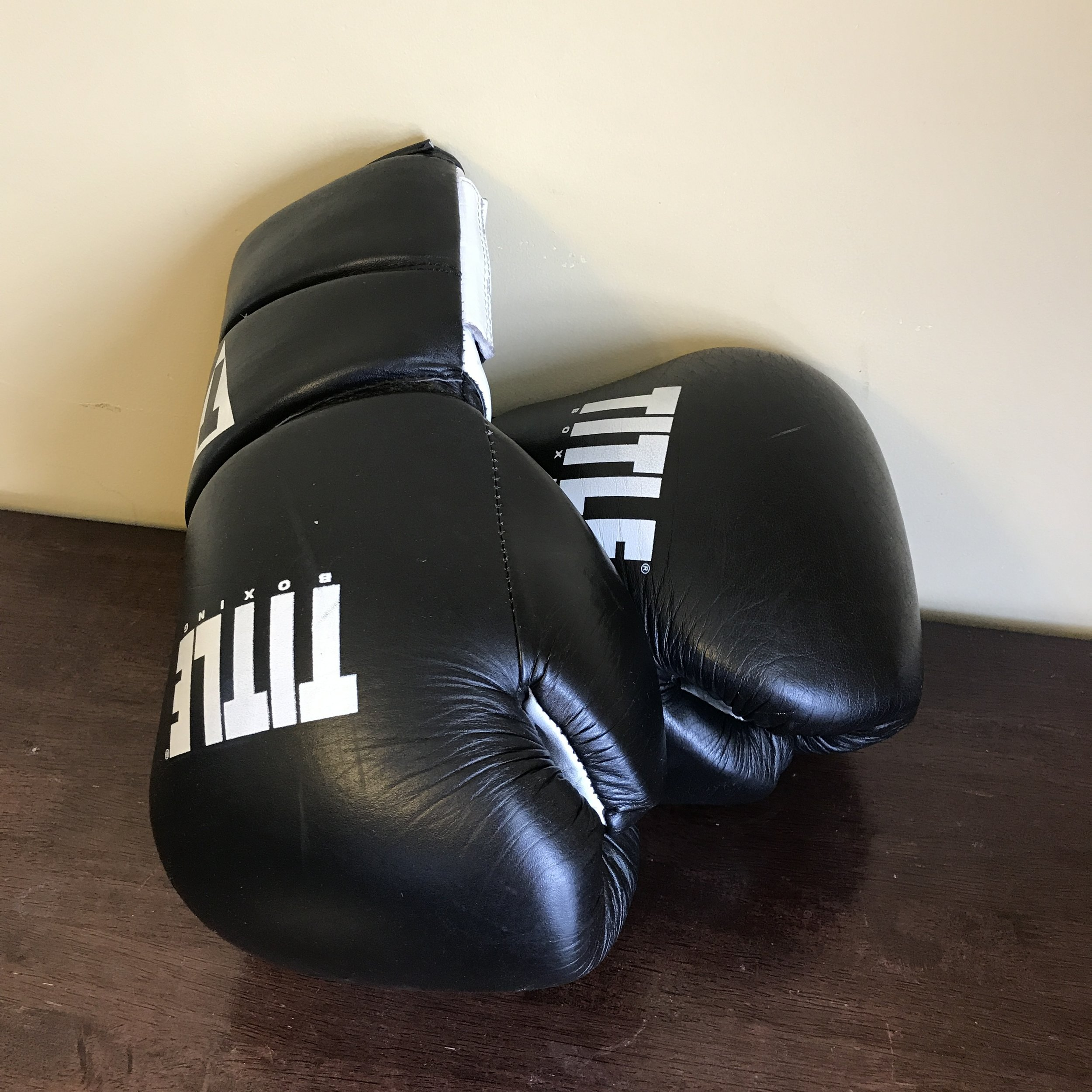 Title 16 oz. boxing gloves