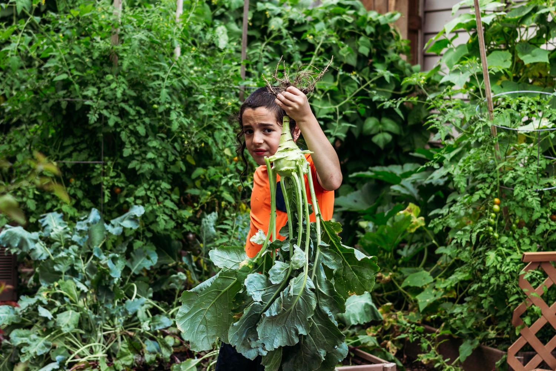 vegetable-garden-backyard.jpg