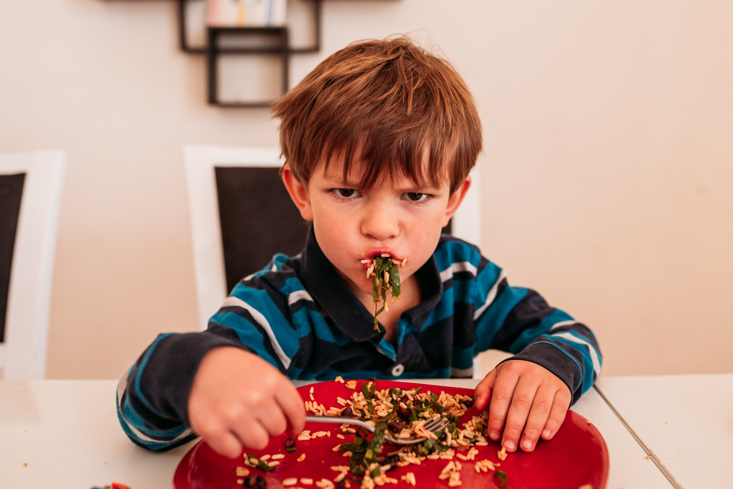 5 year old boy eating lunch, stuffing his face with food coming out of his mouth