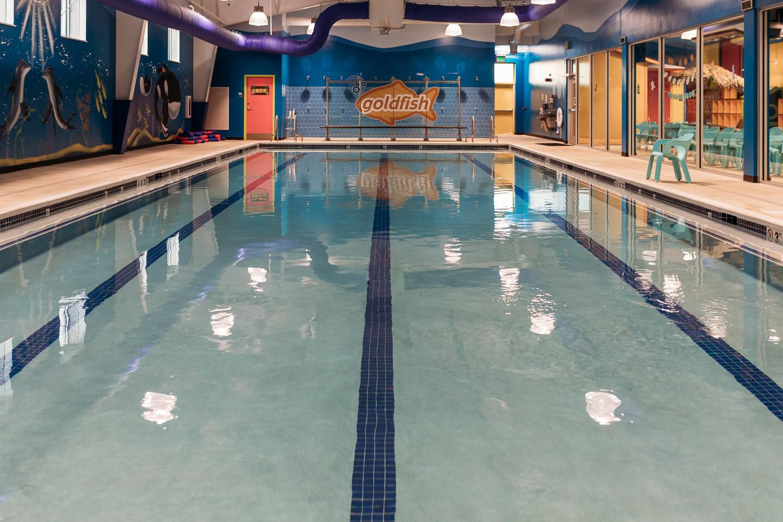 BlimieT-GoldfishSwimSchool-brookfield-milwaukee-underwater-swimming-6003.jpg