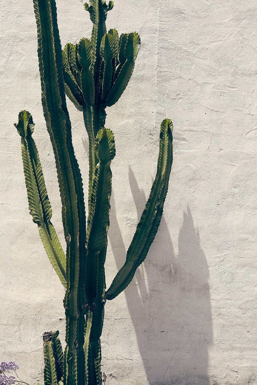 170506_Sean_Drews_Los_Alamos-0672.jpg