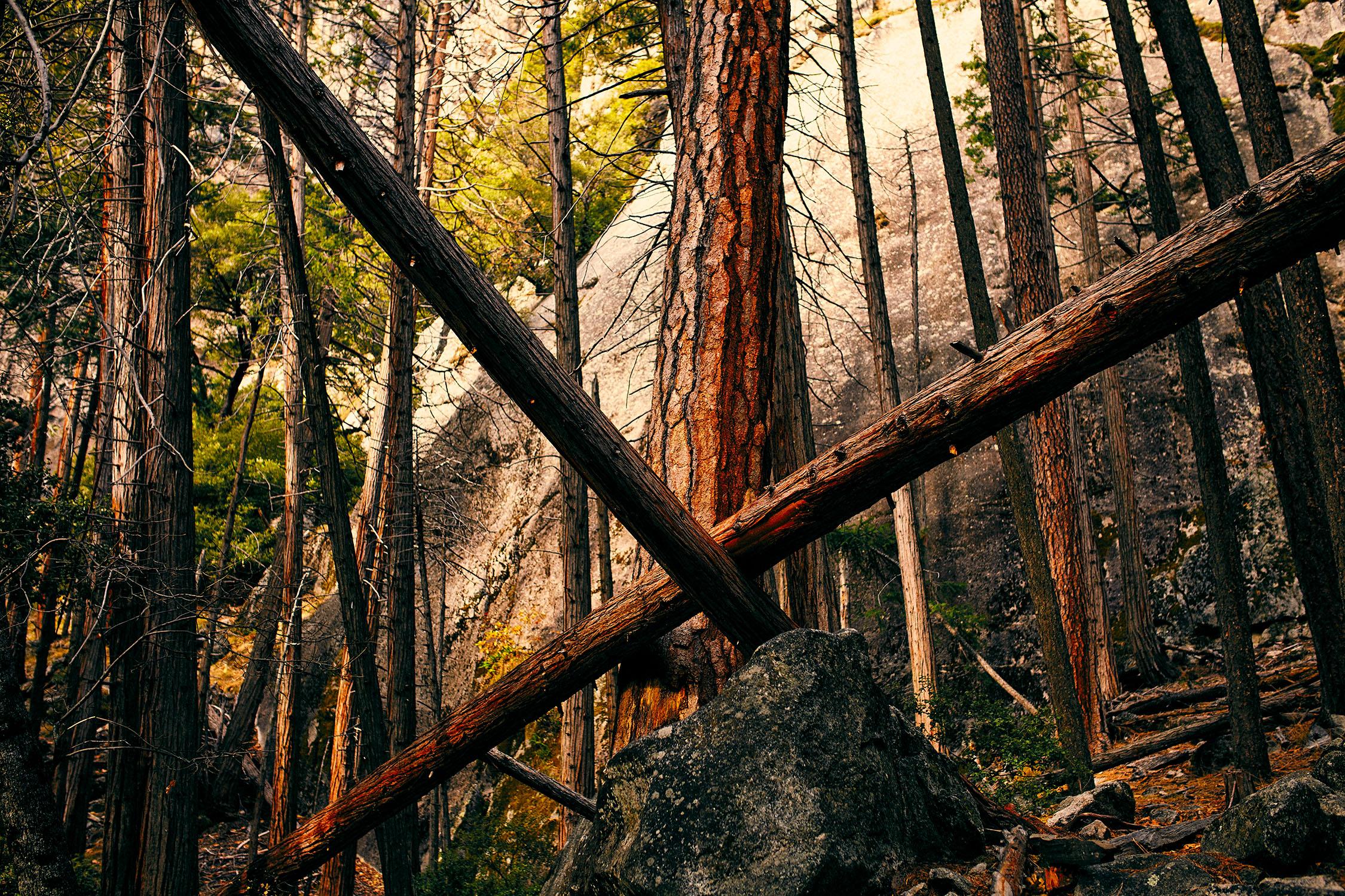181215-SD-Yosemite-0580.jpg