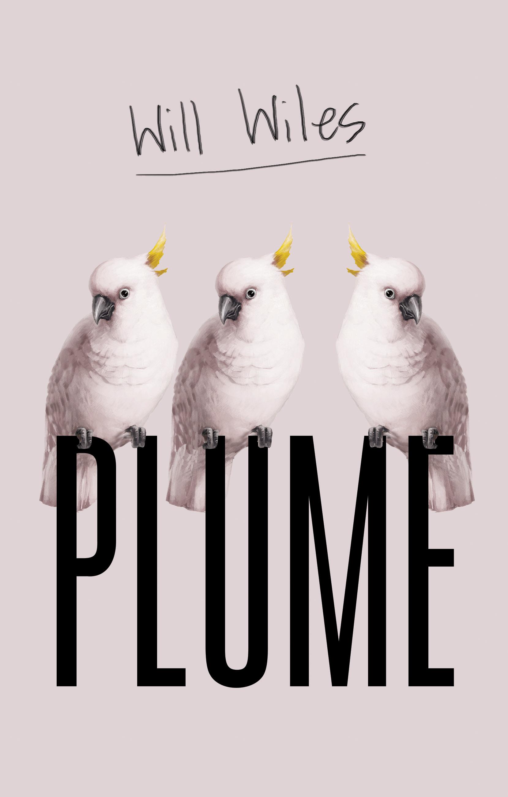 Plume_R1_V7.jpg