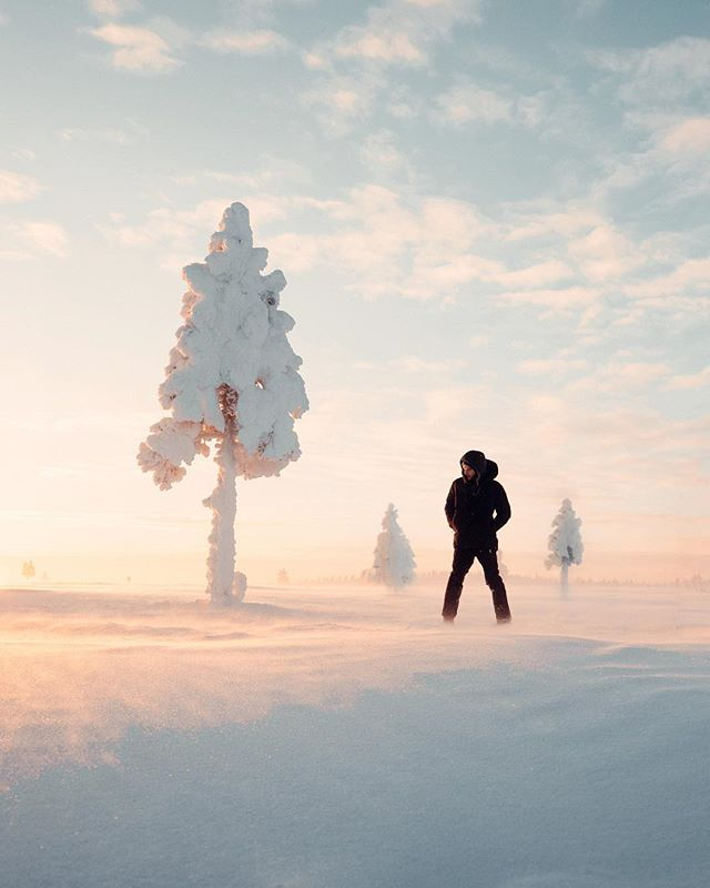 The incredibly frigid yet beautiful Lapland. ❄️✨ spent a week out here with @foursigmatic learning about the origins of the Sami people who first pioneered the Arctic land to all the different mushrooms that grow out here and got to forage for Chaga mushrooms first hand! Oh and of course the -40c ice plunge 😂 haha the coldest thing ive ever done. ❄️❄️ but it was really cool to hang out with the @foursigmatic team. A brand I've been a supporter of for over a year now and love everything they make. Check them out if you're interested! @foursigmatic ✨🍄🙌🏽❄️