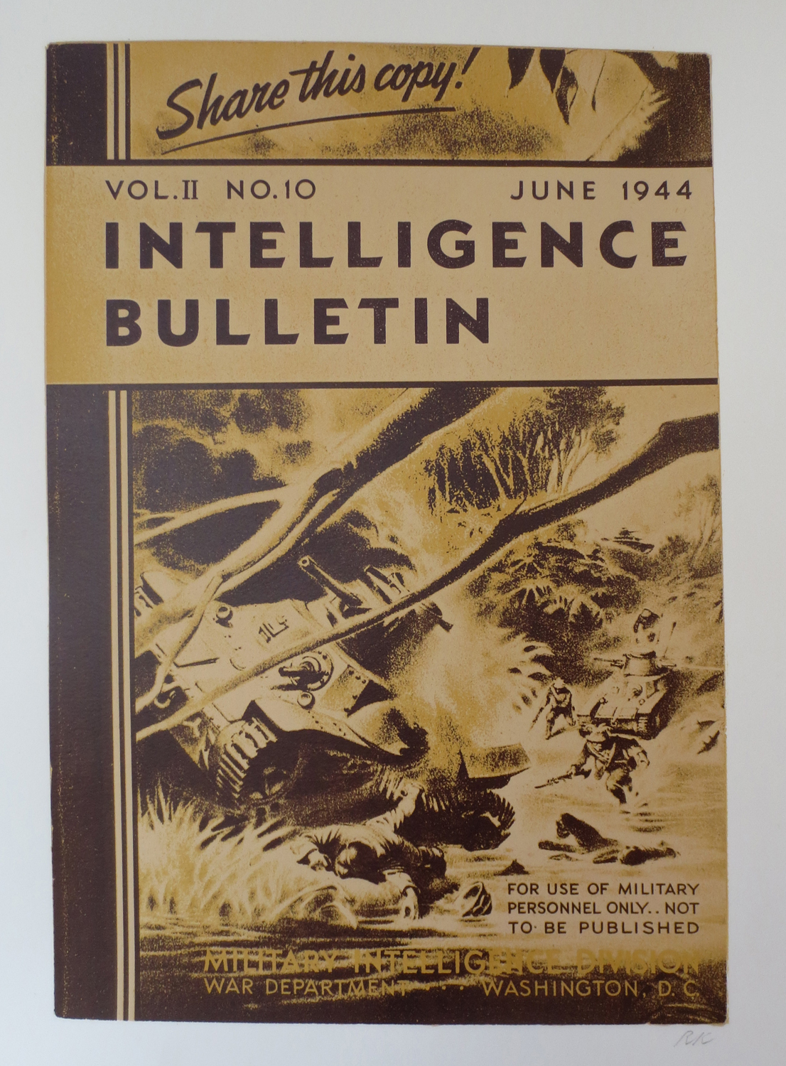 Intelligence Bulletin