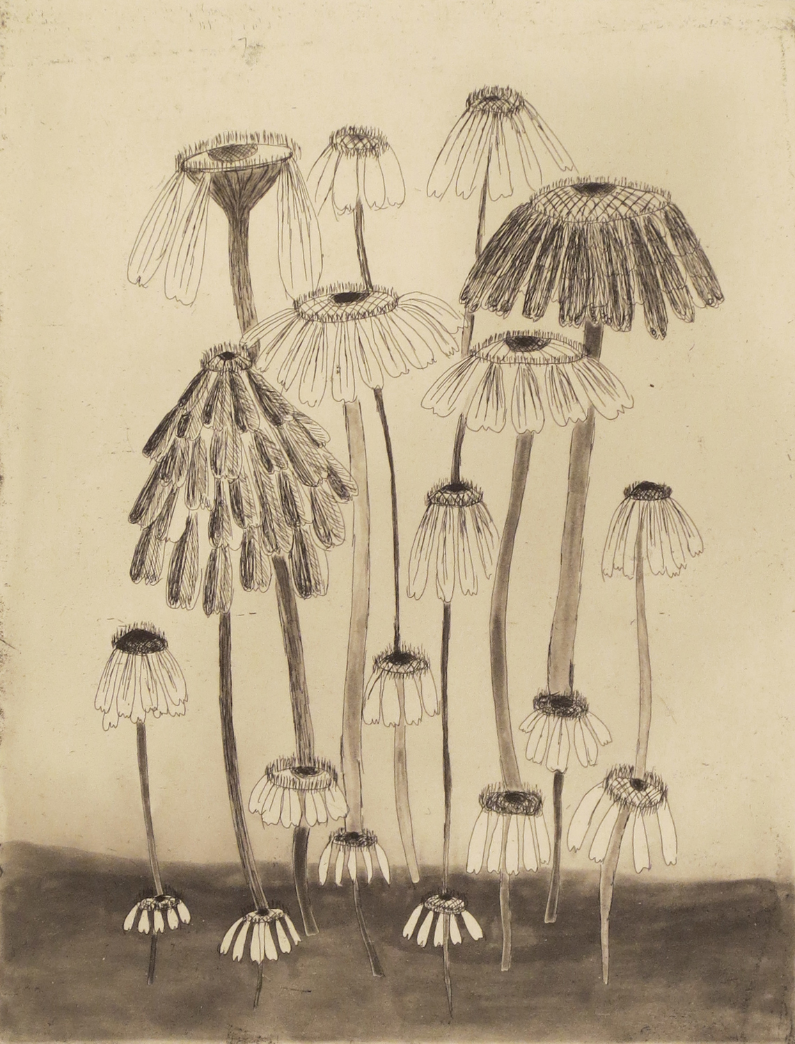 Kiki Smith   Variety Flowers II , 2014 Etching, aquatint and drypoint Image size: 11 3/4 x 9 inches Sheet size: 19 1/2 x 15 inches Edition of 13 Set of four