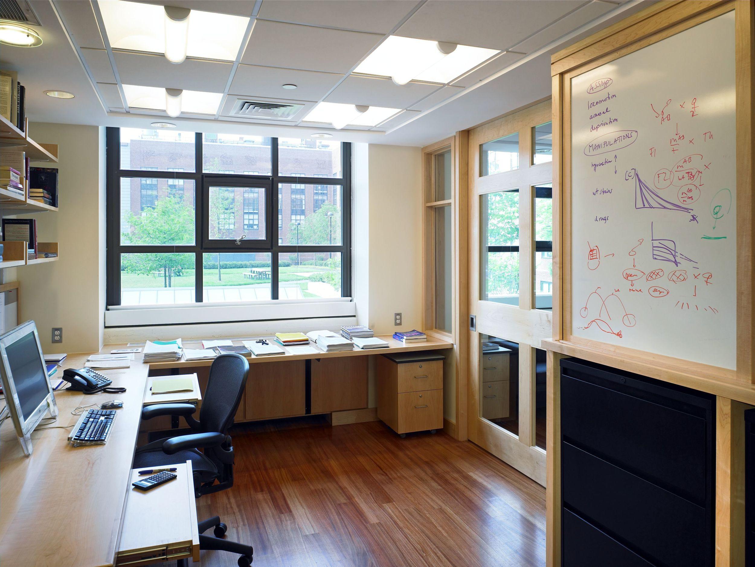 Harvard Schier Office 2.jpg