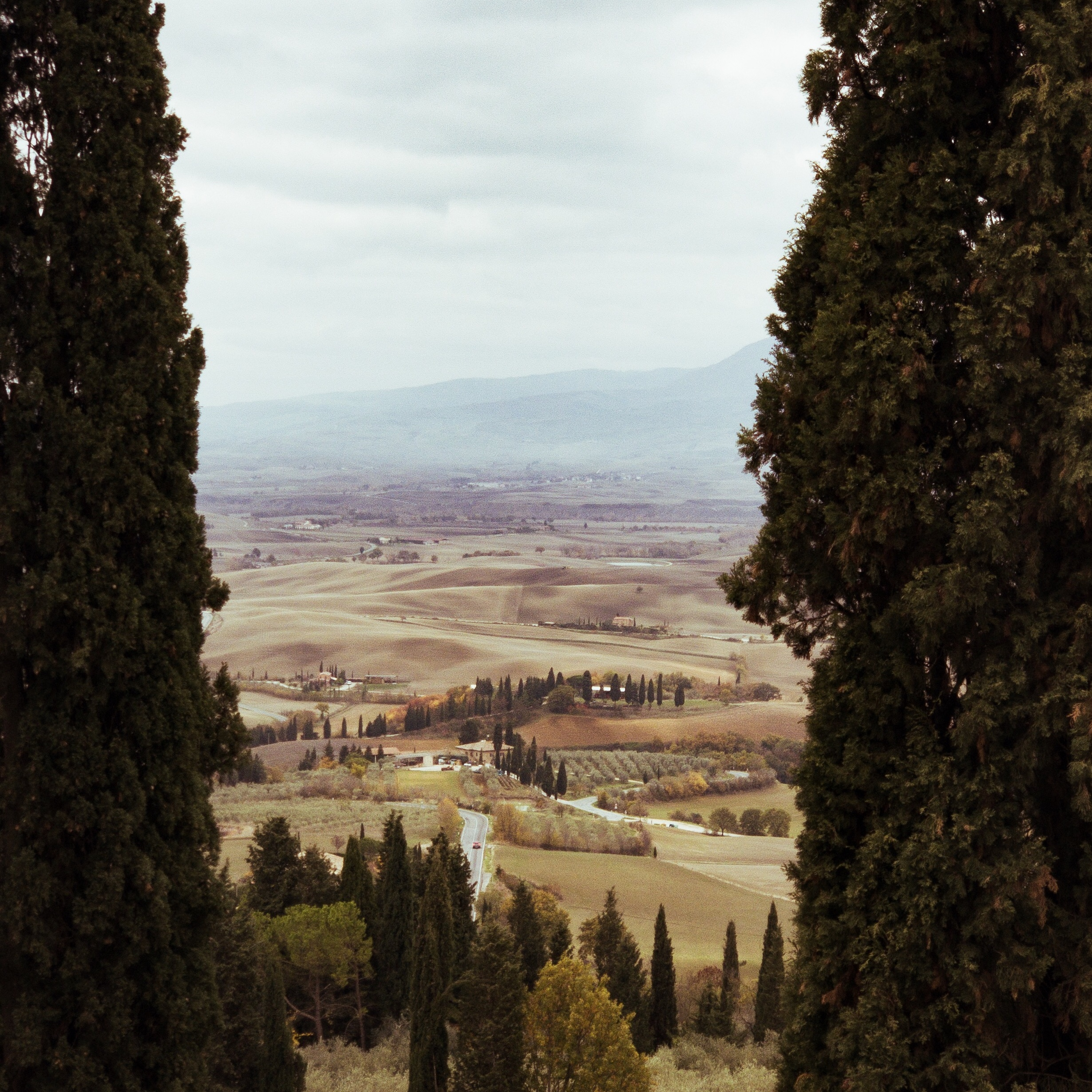 What defines the rolling hills of Tuscany can also act as a window to the rolling hills of Tuscany