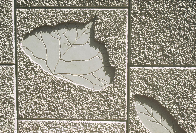i90-leaf-2.jpg