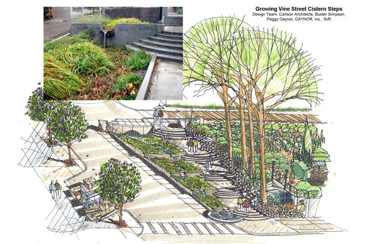 Growing-Vine-Cistern-Steps_2003-attrib1.jpg