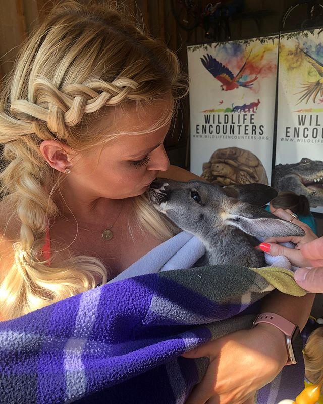 New bestie❤️ . . #kangaroo #wildlifeencounters #hijackingtheparty #33#bestyearever