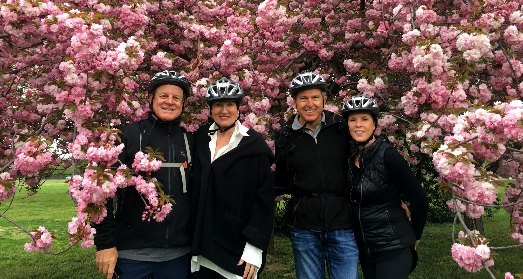Explore DC in a personal and fun way that gets you up close so our iconic scenery. Cherry blossoms are a bonus.