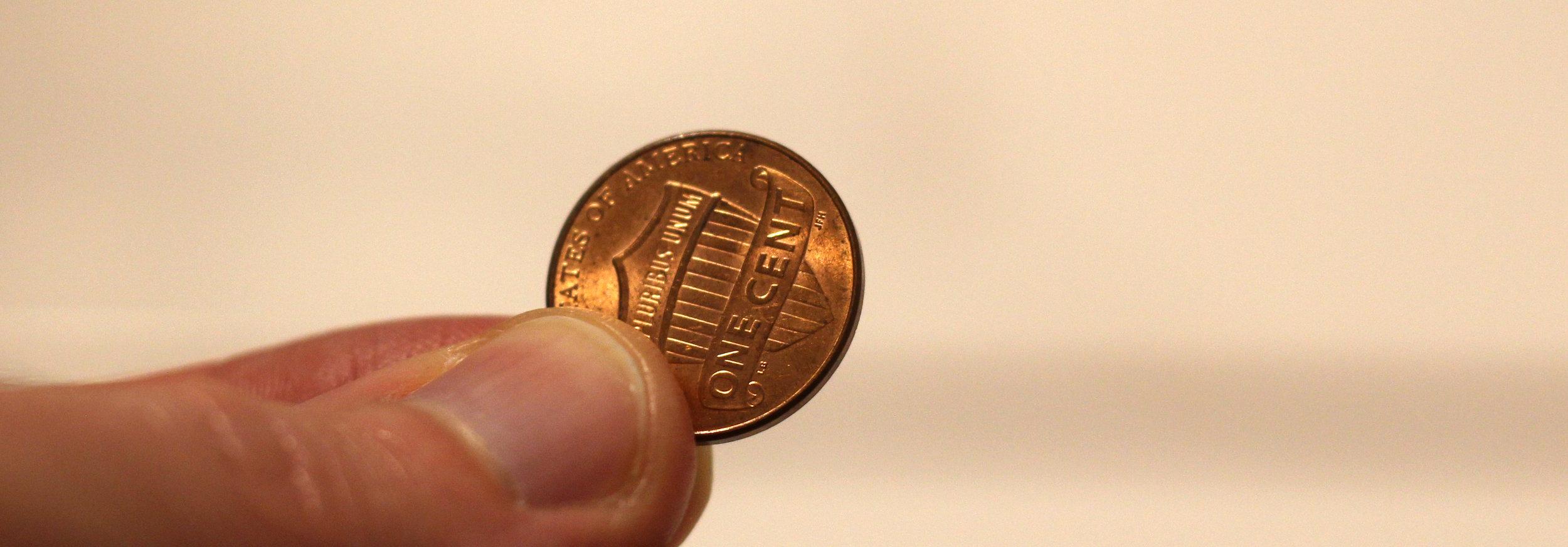 penny crop.jpg