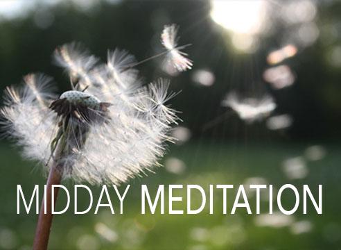 metta midday meditations