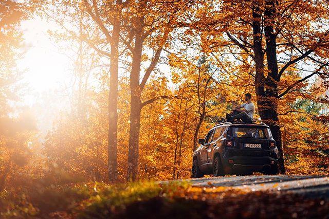 Jeeplife!  ____________ • Canon 1Dx mk2 | Sigma Art 35mm f/1.4 • #pmgridchallenge #moodygrams #mg5k #aov #jeepsverige #jeep #jeeplife #jeeprenegade #sigmaphotosweden