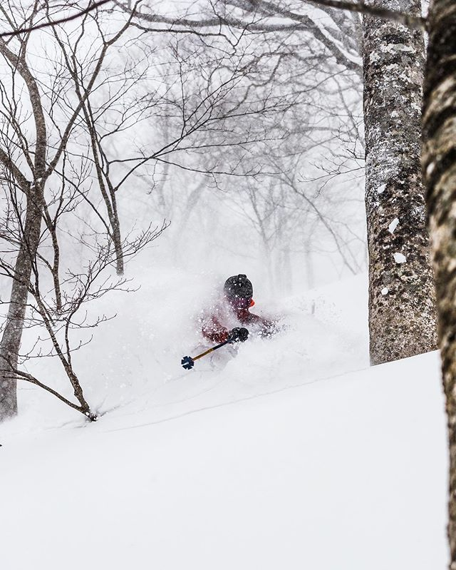 Some of the most amazing runs in a long time. Japan Delivers as promised!  @linuszetterlund behind the camera.  #japow #powder #japan #japanski