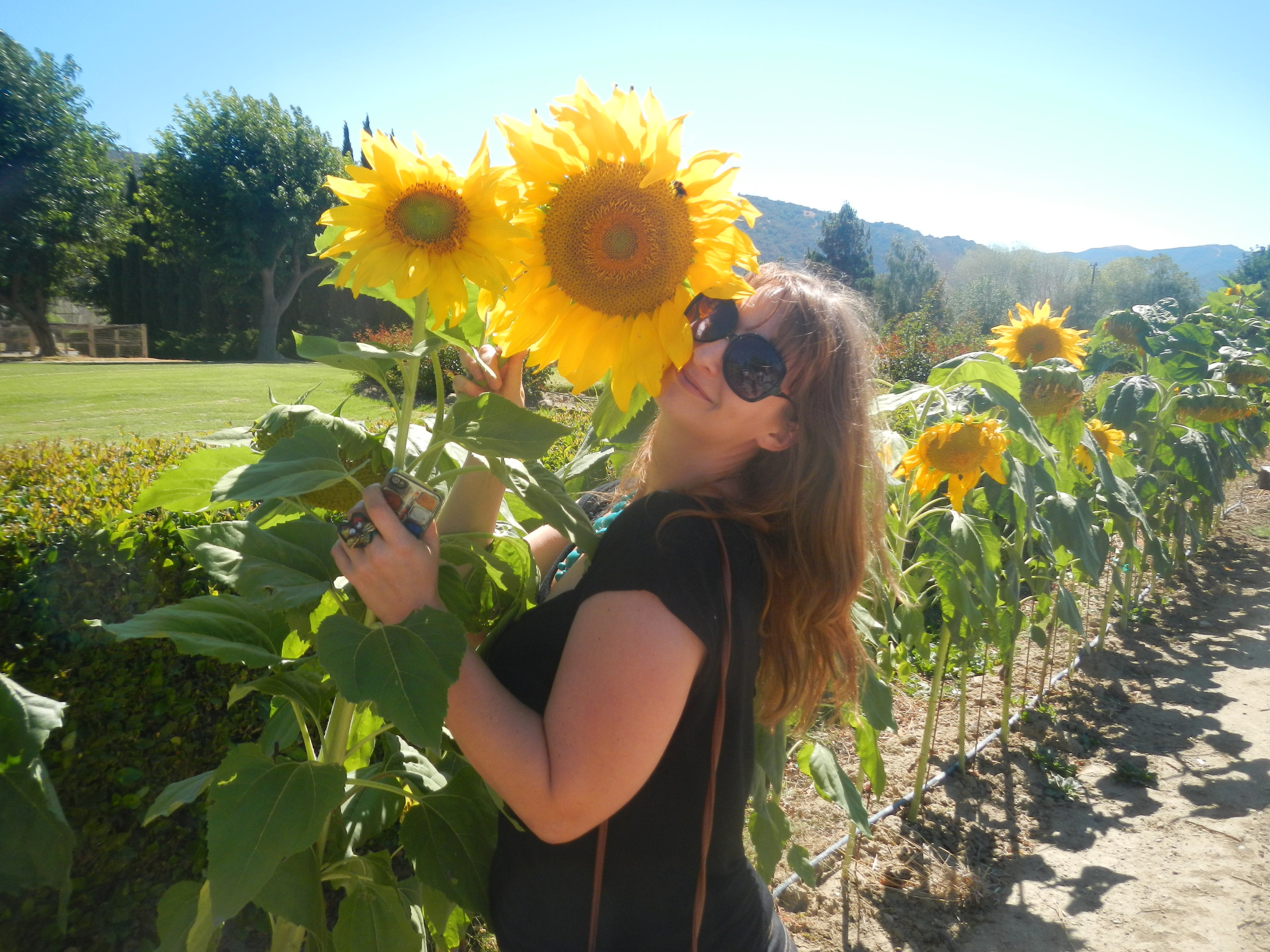 becca wine sunflowers.JPG