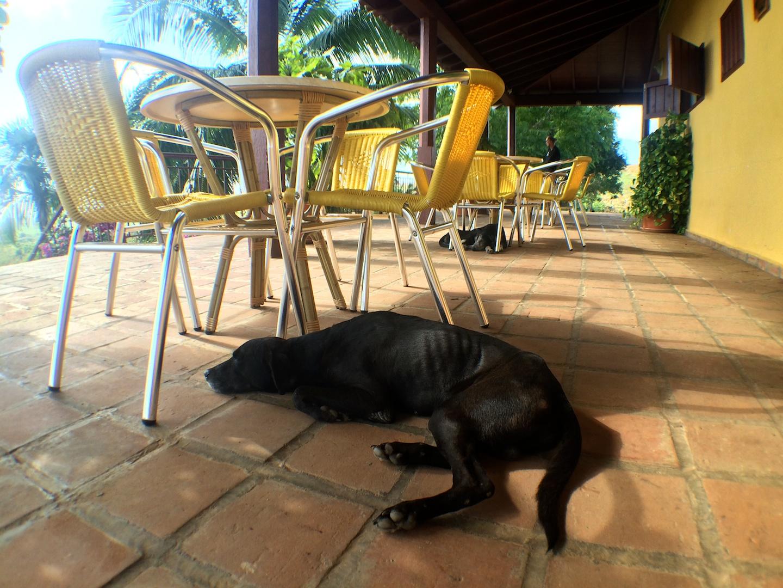 Cuba_20151130 135.jpg