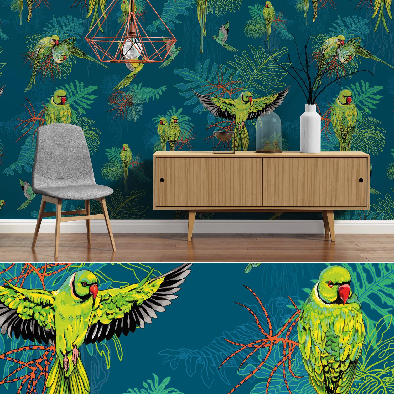 parakeet_room.jpg