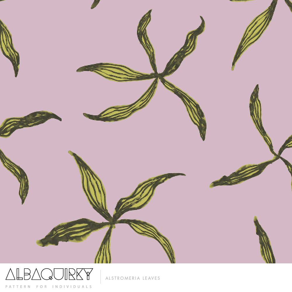 albaquirky_astralomeria_leaves.jpg