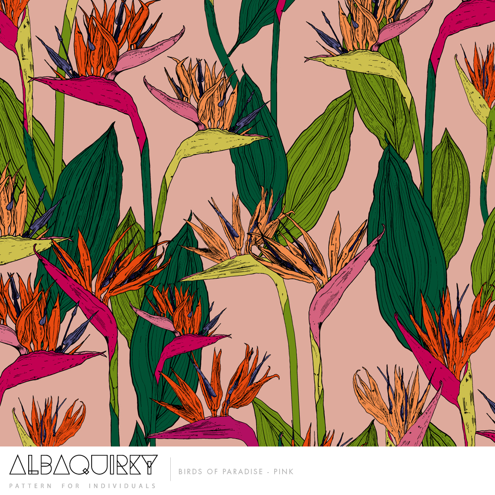albaquirky_birds_of_paradise_pink.jpg