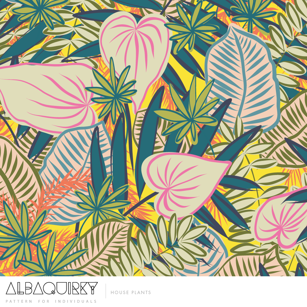 albaquirky_house_plants.jpg