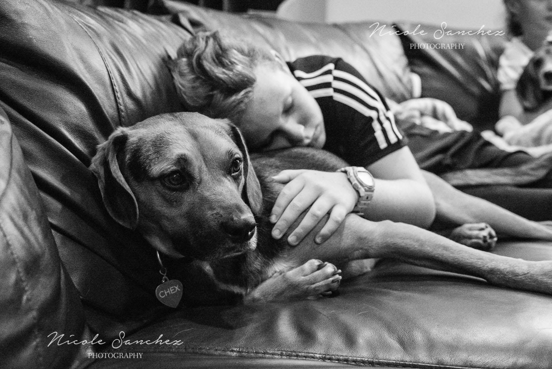 Family_Documentary_Backyard_Dogs_11.jpg