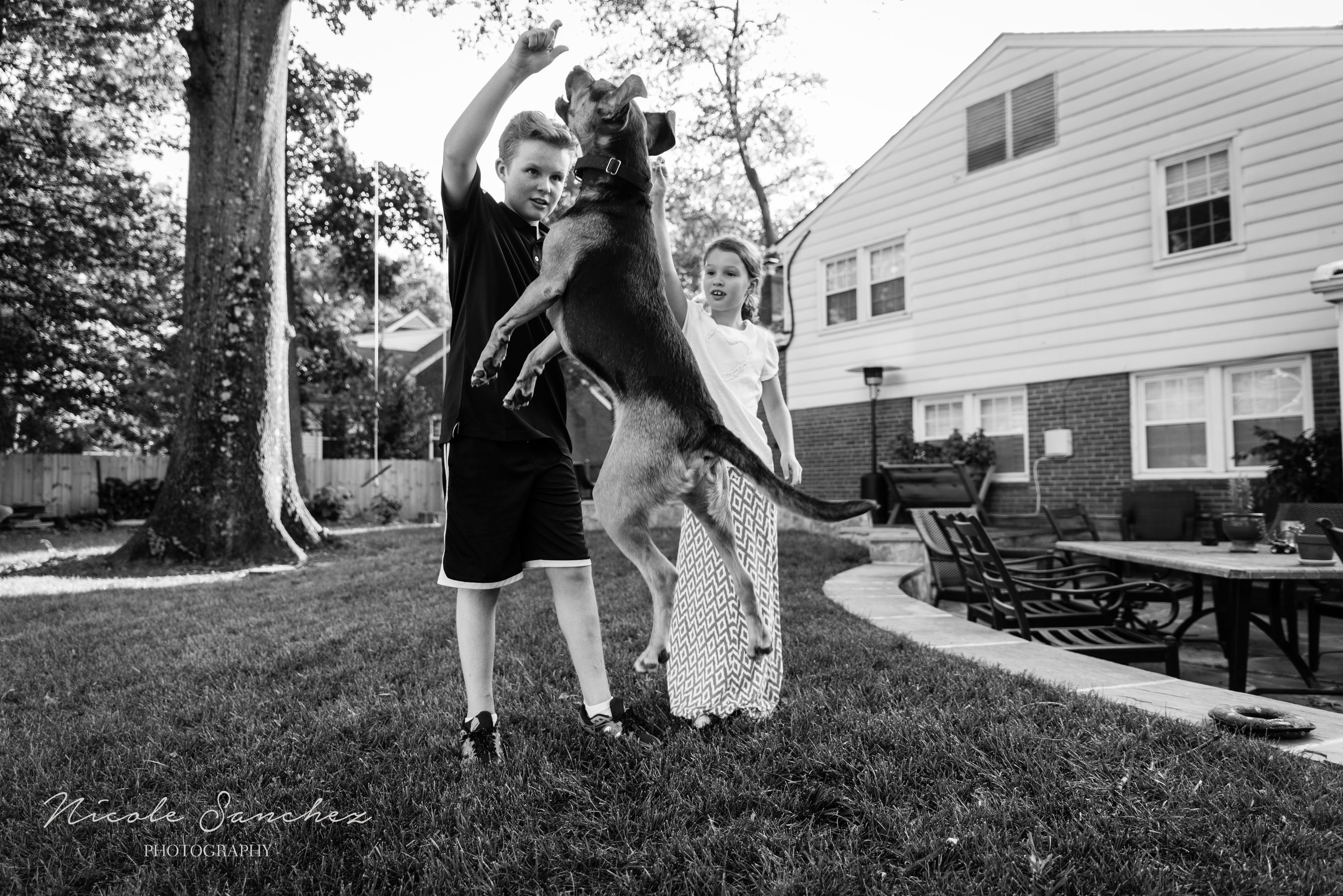 Kids playing with dog | Alexandria, VA Family Photographer