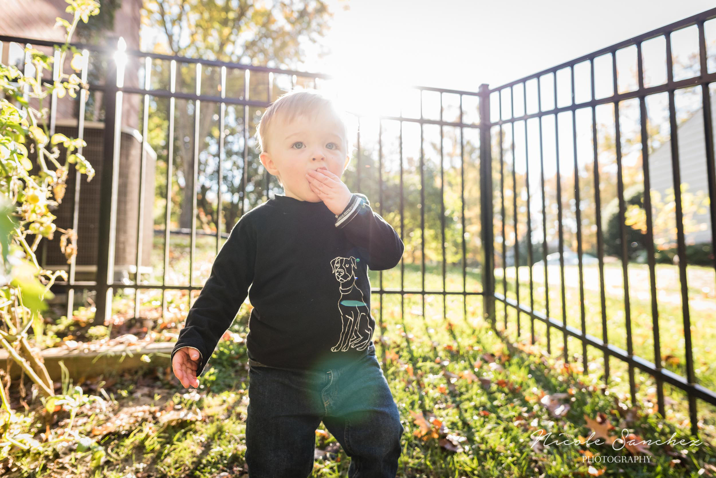 Boy eating tomato during backyard session in Alexandria, VA by Documentary Family Photographer Nicole Sanchez
