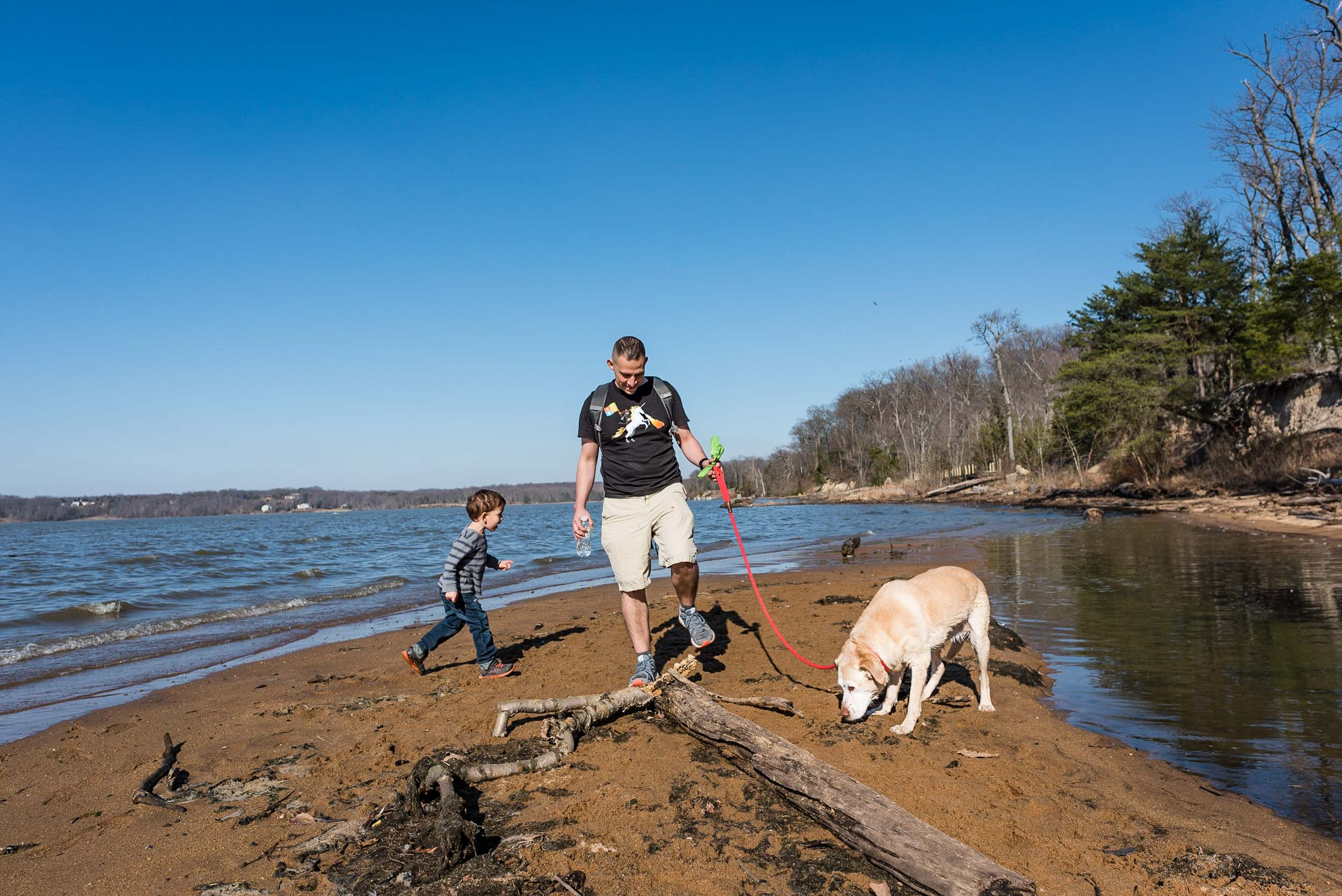 father and son walking along potomac river at Mason neck state park by northern virginia family photographer nicole sanchez