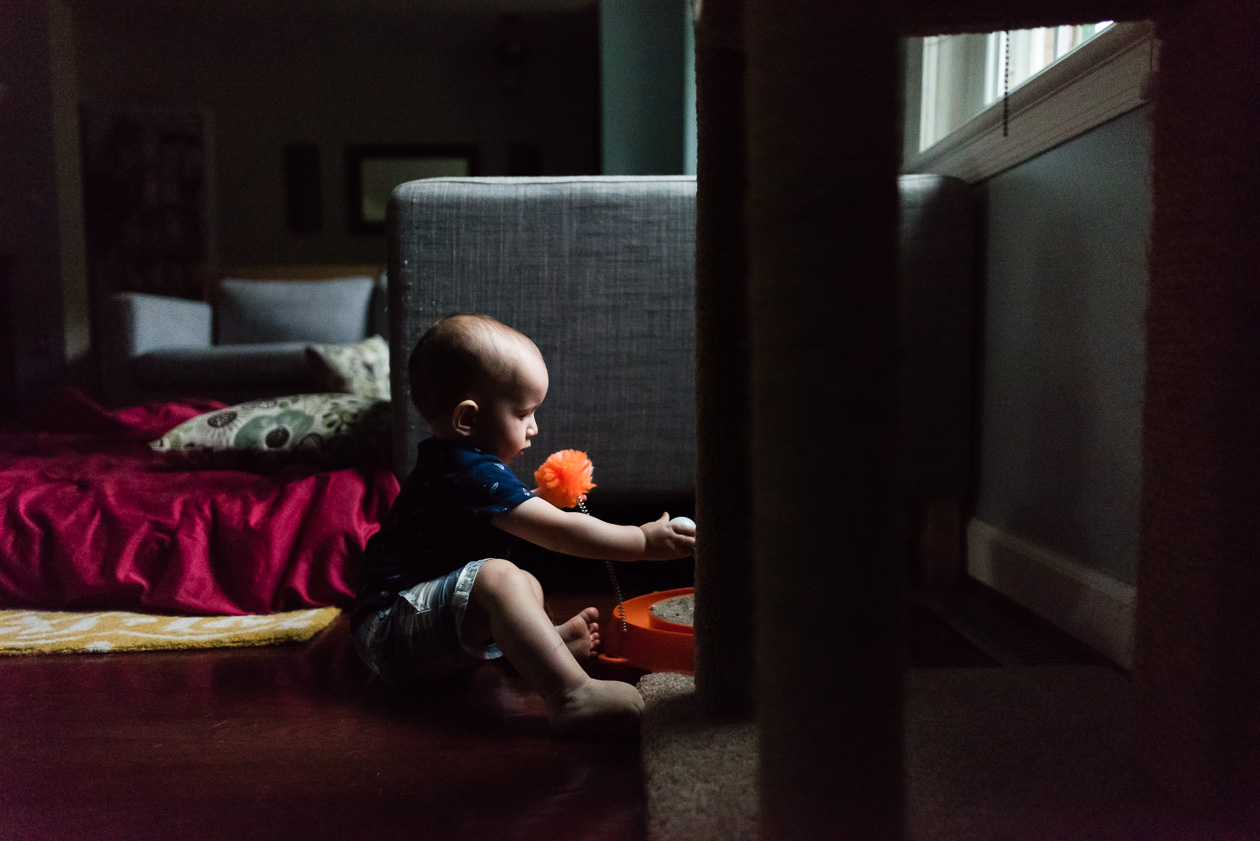 baby playing with cat toy by northern virginia family photographer nicole sanchez