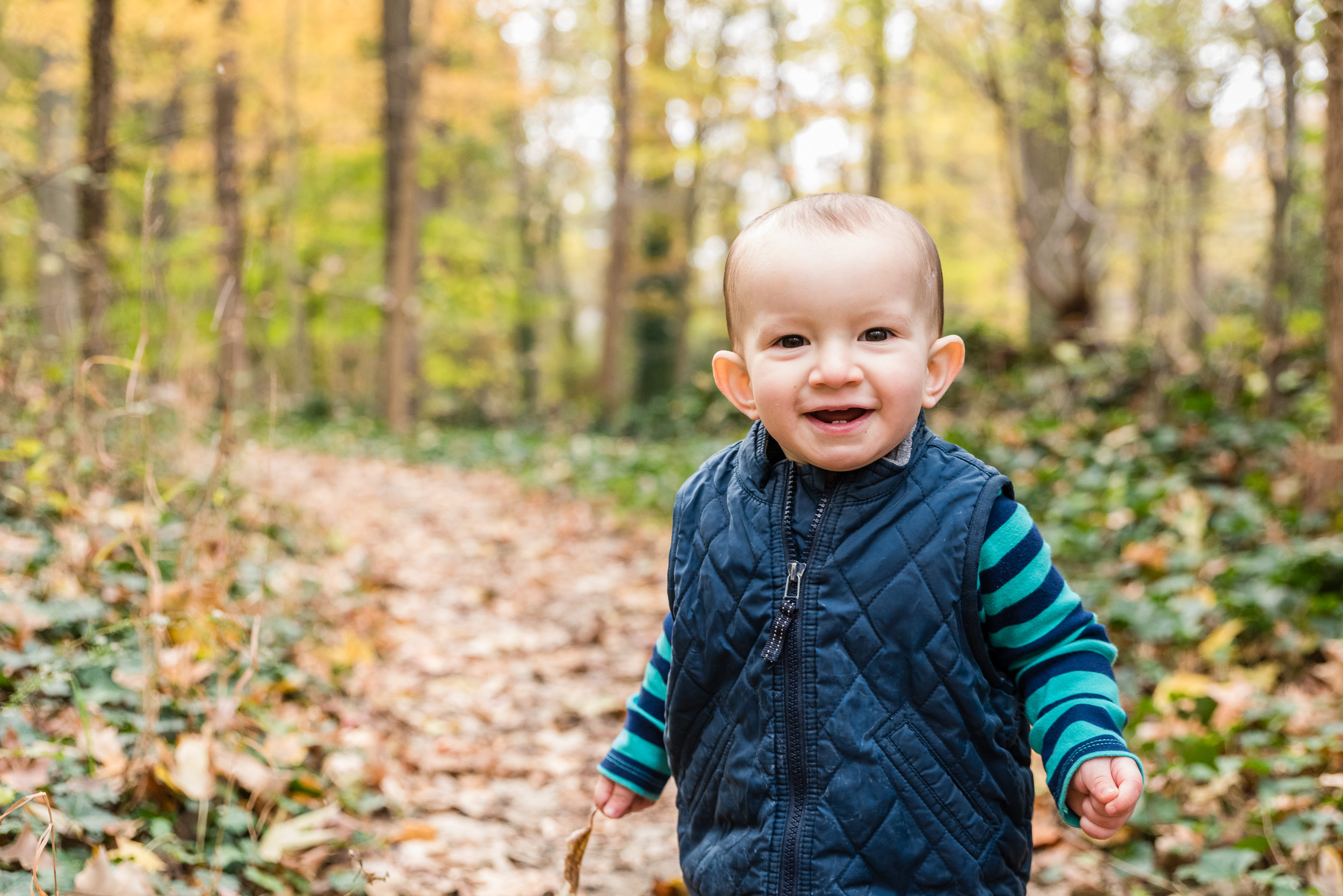 Toddler playing in fall leaves by Northern Virginia Family Photographer Nicole Sanchez