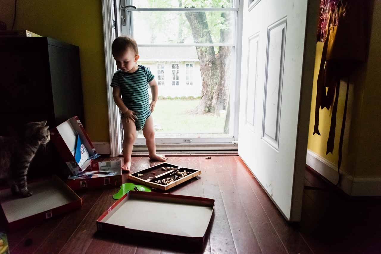 Toddler playing with games on floor by cat by Northern Virginia Family Photographer Nicole Sanchez