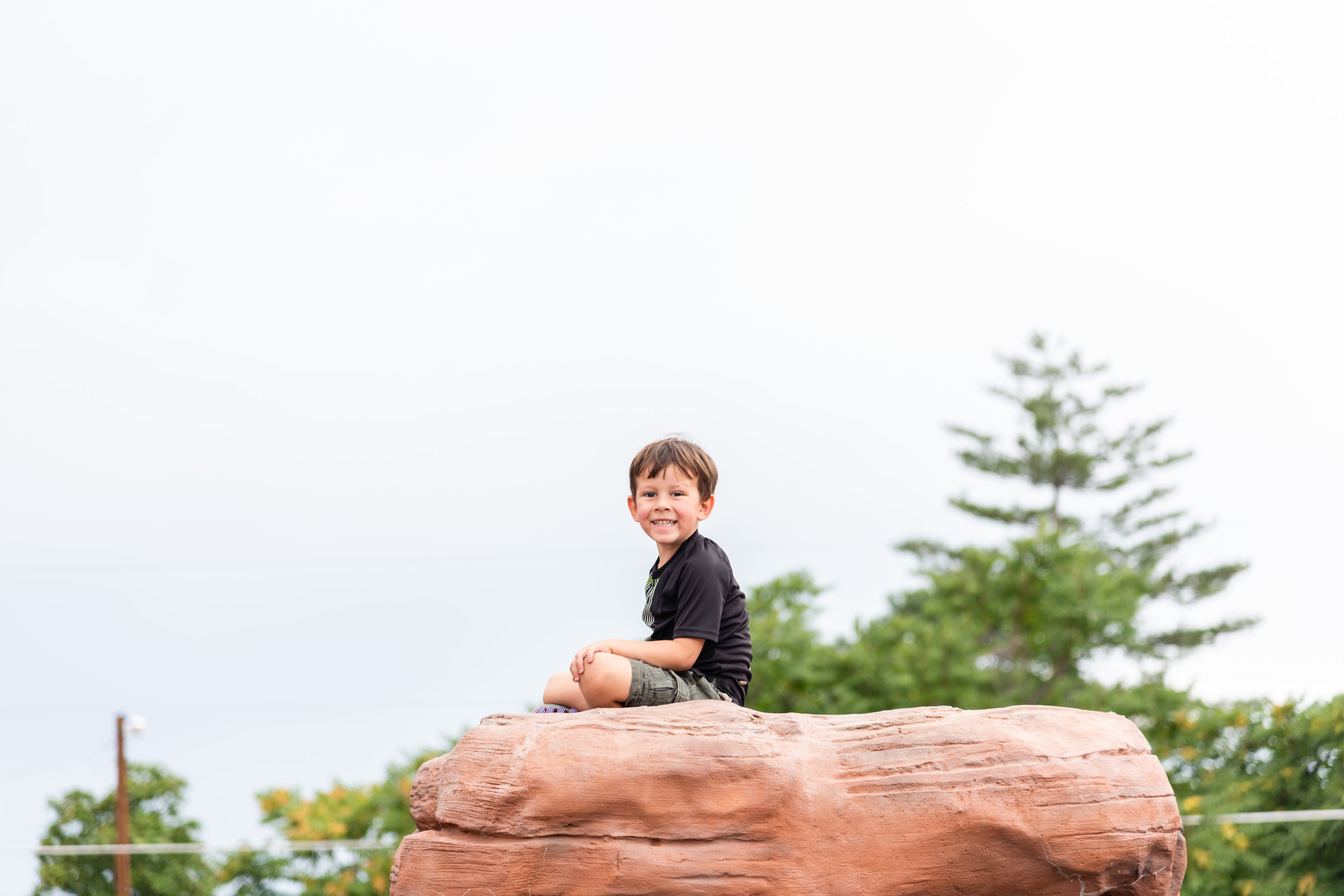 Boy at top of big rock August Favorites by Northern Virginia Family Photographer Nicole Sanchez
