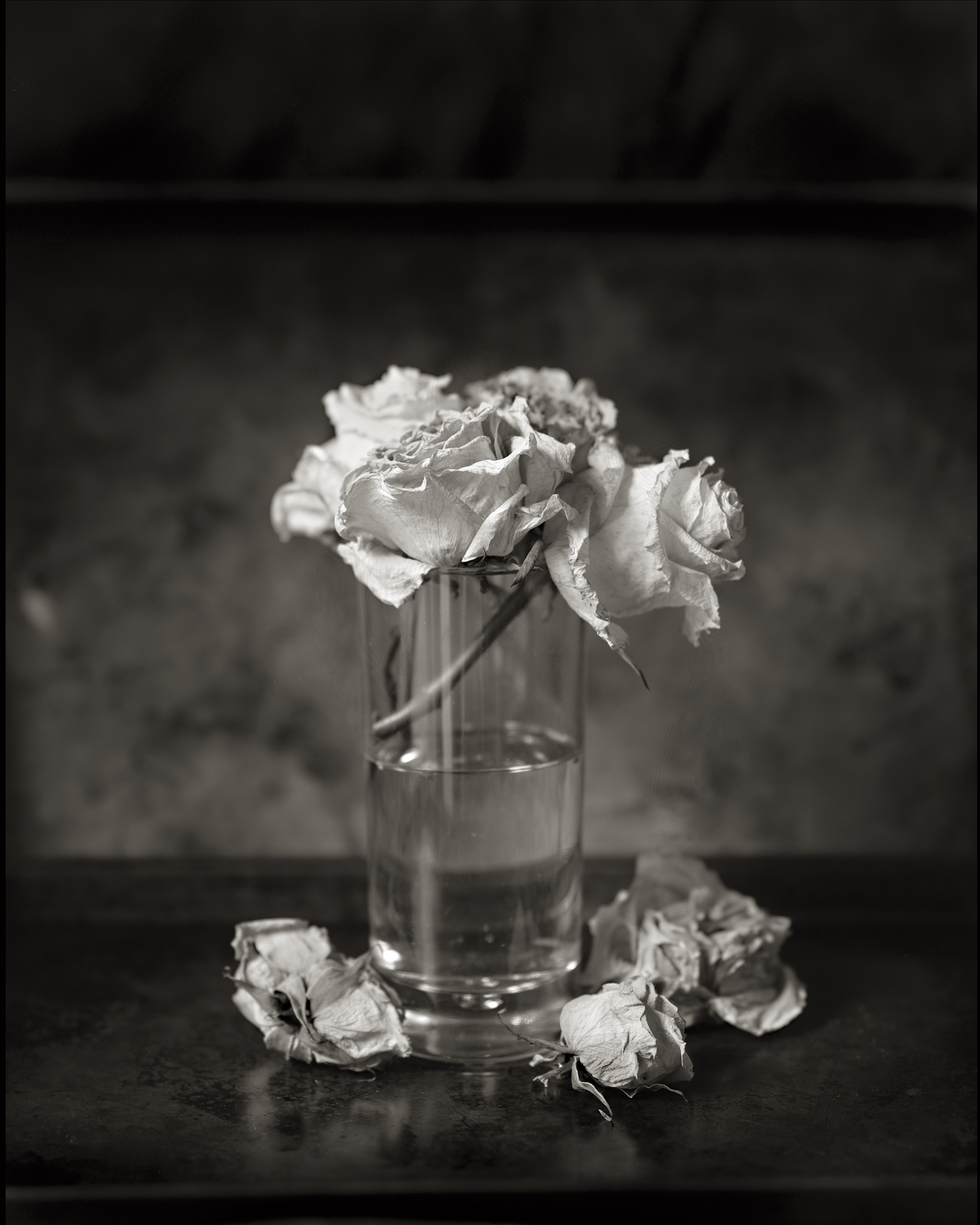 FLOWERS IN A GLASS HALF EMPTY