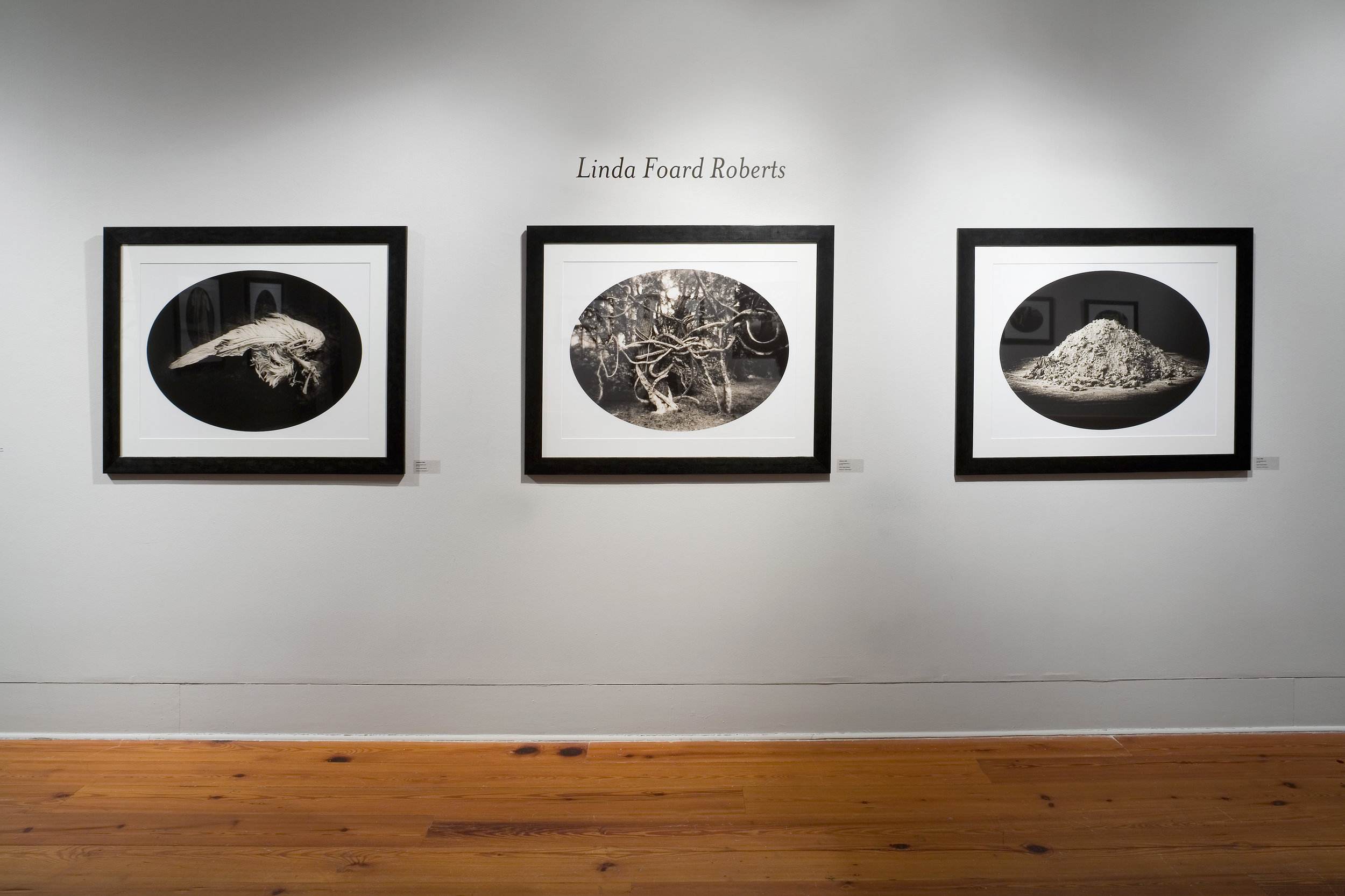 THE LIGHT FACTORY PHOTOGRAPHIC ARTS CENTER  ESTEEMING THE PEARLS EXHIBITION WITH LUIS GONZALEZ PALMA