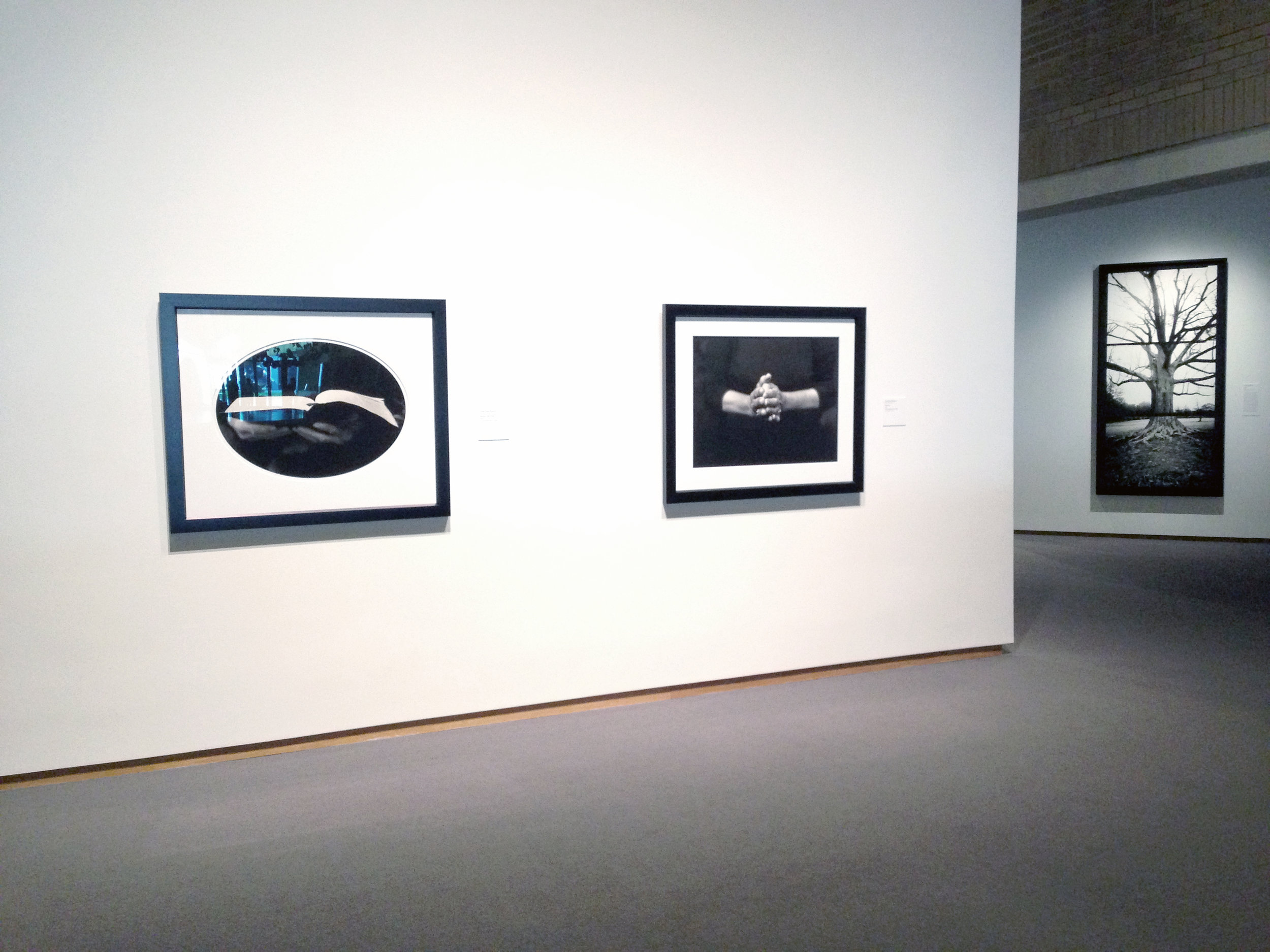 THE NORTH CAROLINA MUSEUM OF ART  PERMANENT COLLECTION EXHIBITION