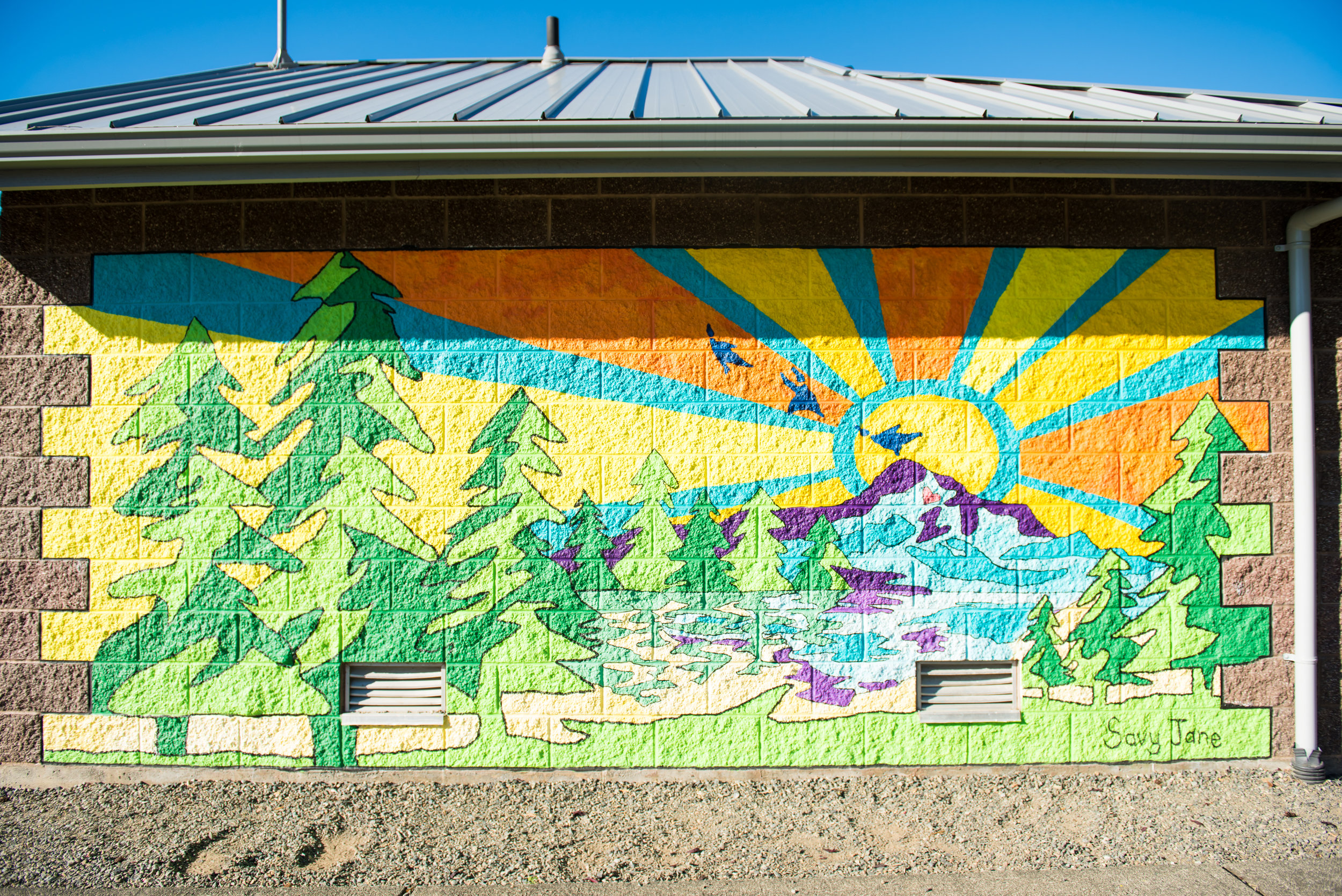 """Abundance of Light""; City of Bonney Lake; 12x6'; Completed 2015"