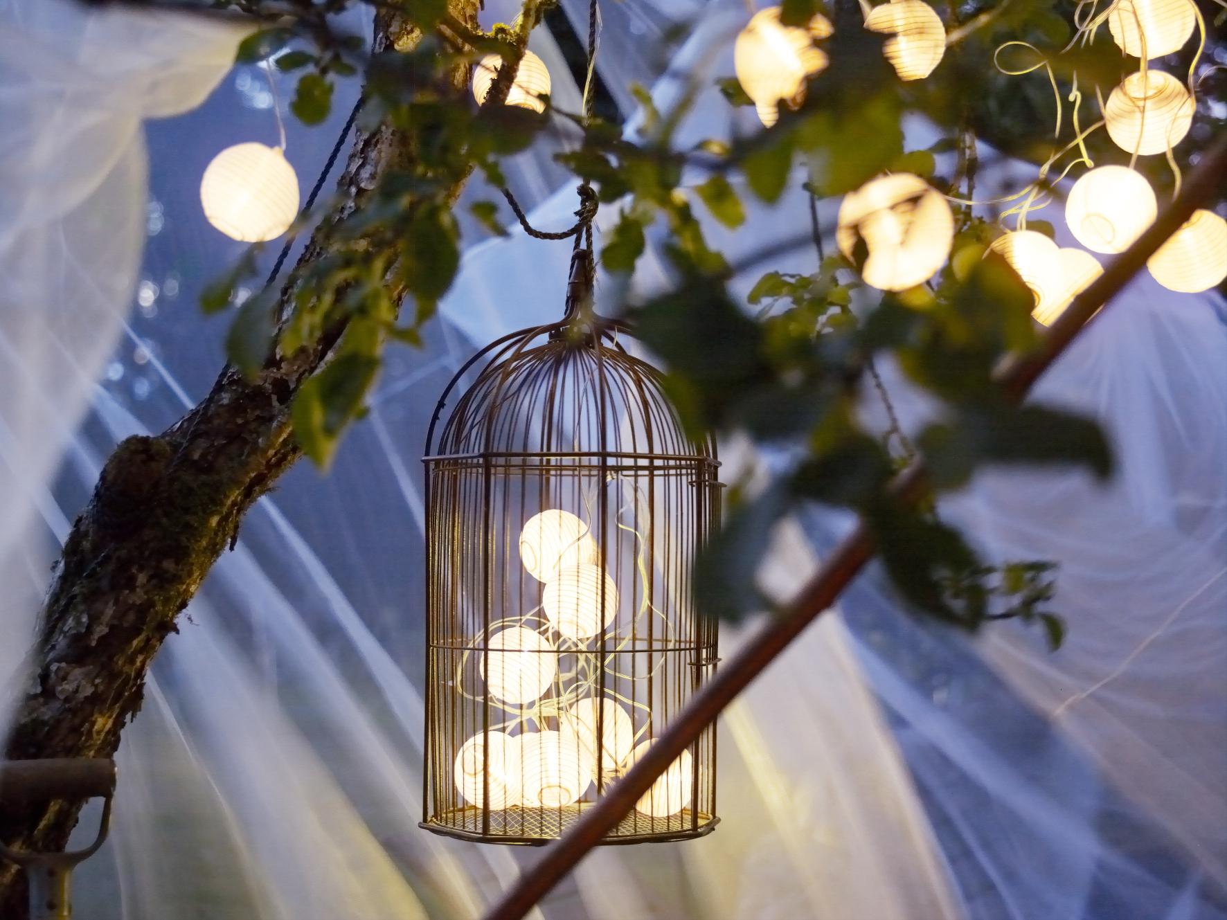 Solarvet solar light chain, £8  www.ikea.com