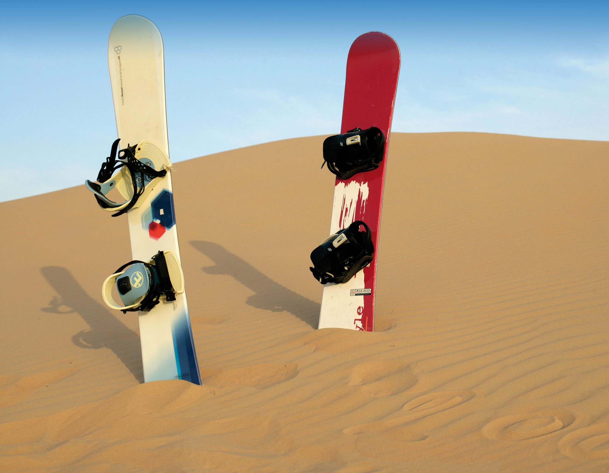 8_31_sand-boarding.png