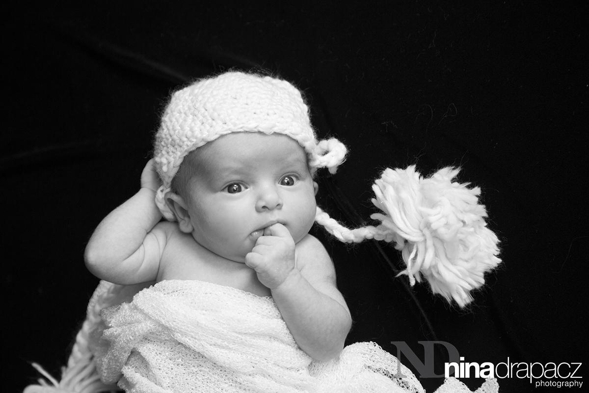 newbornportrait4.jpg