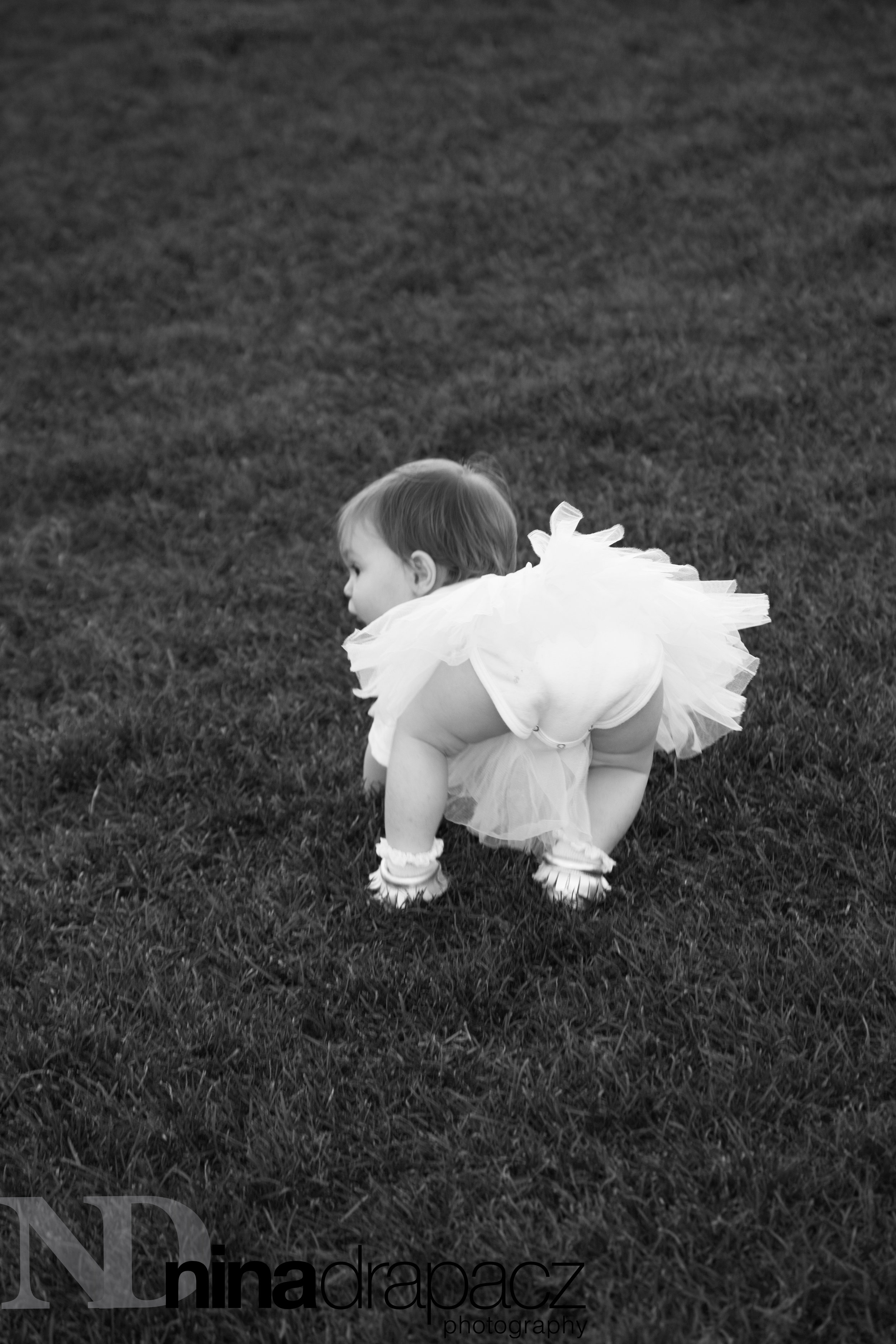 toddlerphotography121.jpg