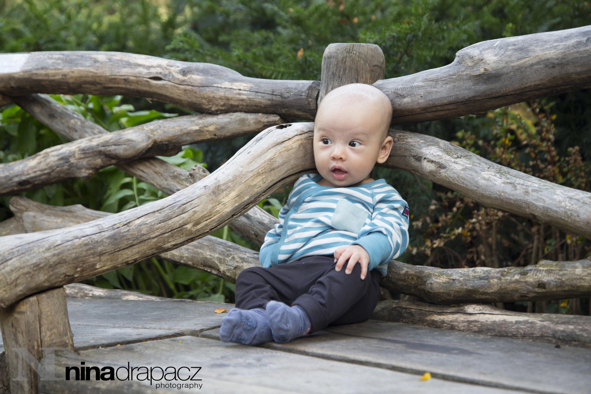 babyphoto66.jpg