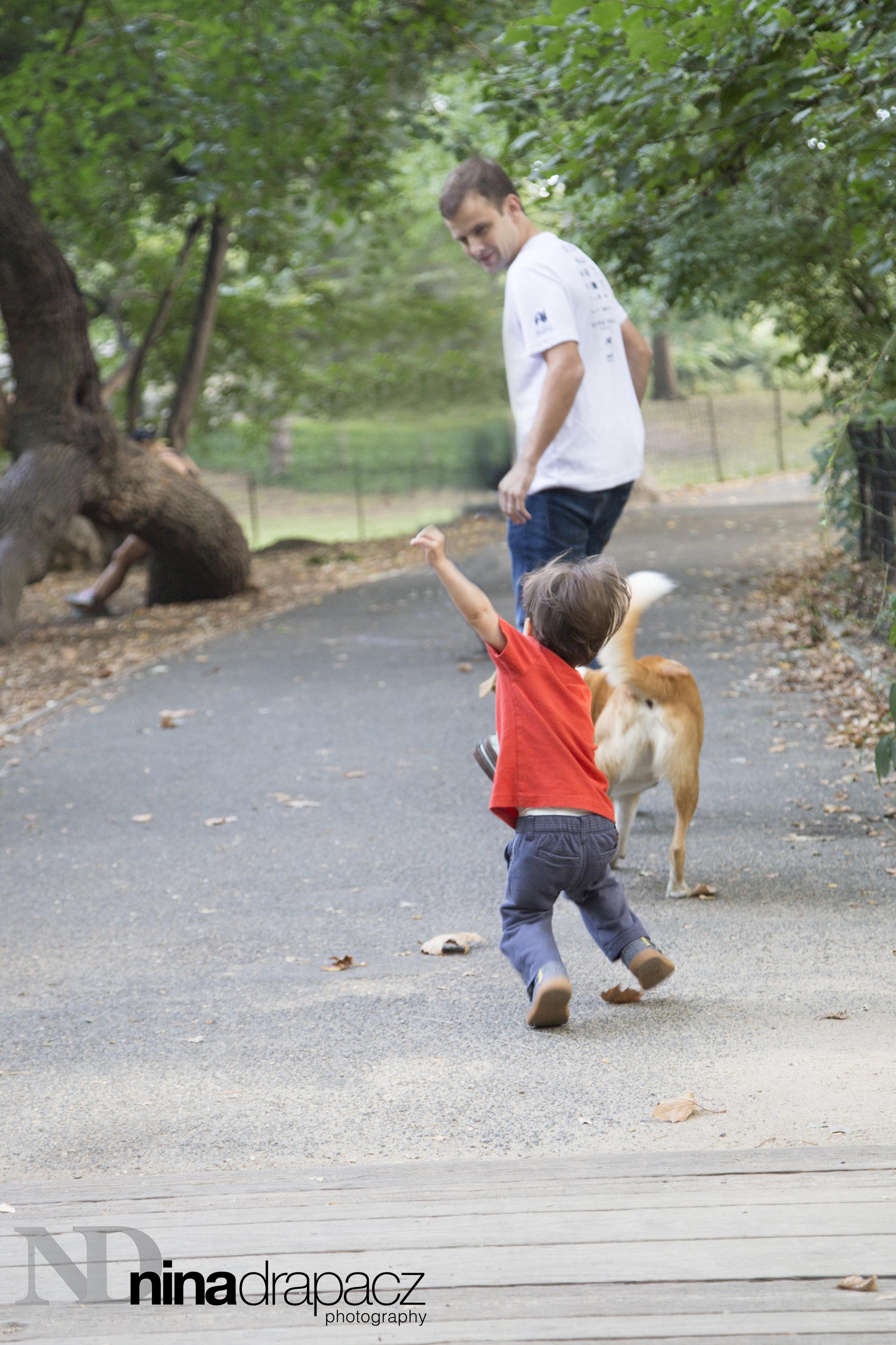 boyand dog3.jpg